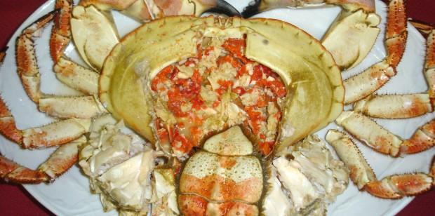 Buey de mar (crab)